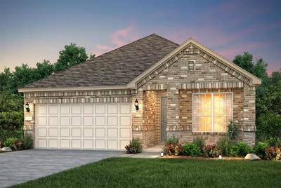 Austin Single Family Home For Sale: 9819 Betulla Dr