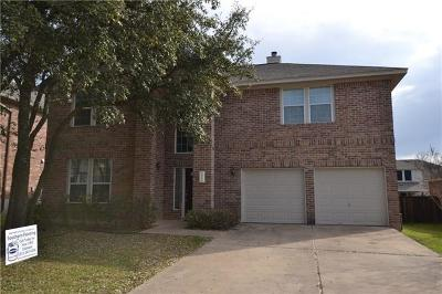 Leander Single Family Home For Sale: 2602 Tumbling River Dr