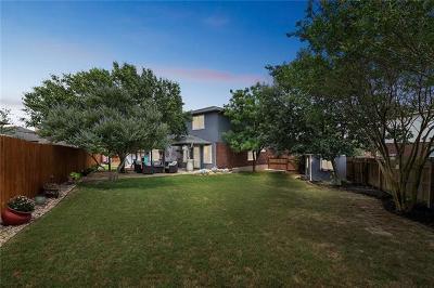 Kyle Single Family Home For Sale: 120 Palo Duro Cv