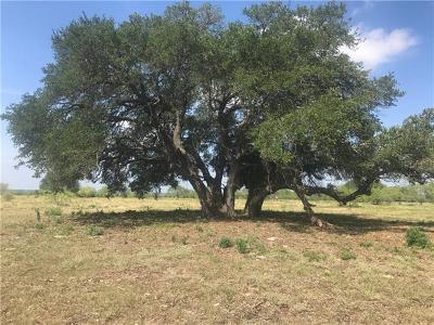 Bell County, Burnet County, Coryell County, Lampasas County, Llano County, McLennan County, Mills County, San Saba County, Williamson County Residential Lots & Land For Sale: 2580 Cr 276