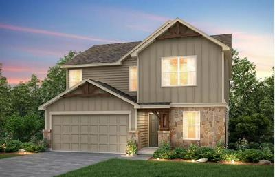 Buda Single Family Home For Sale: 263 Beechnut Dr