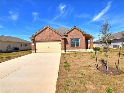 Kyle Single Family Home For Sale: 208 Evening Dusk Dr