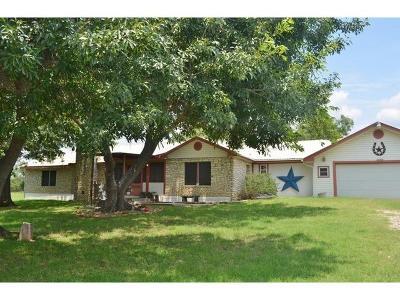 Burnet Single Family Home For Sale: 206 Bluebonnet St