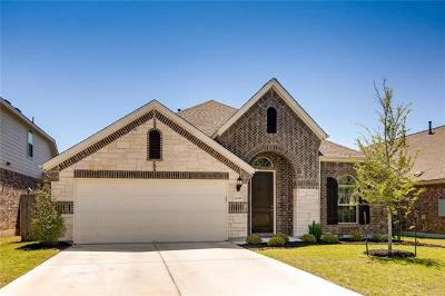 Pflugerville Single Family Home For Sale: 22020 Abigail Way