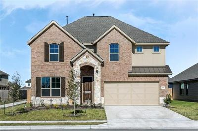 Pflugerville Single Family Home For Sale: 3900 Eland Dr