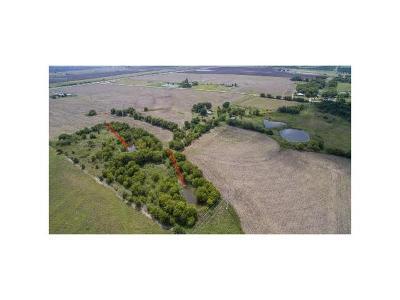 Thrall TX Farm For Sale: $199,000