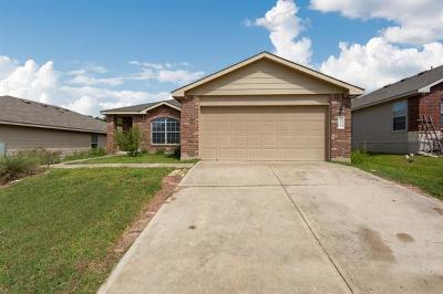 Travis County Single Family Home For Sale: 8916 China Rose Dr