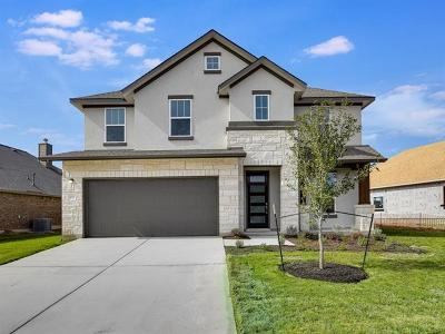 Pflugerville Single Family Home For Sale: 20232 Crested Caracara Ln