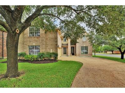 Austin Single Family Home For Sale: 16210 Braesgate Dr
