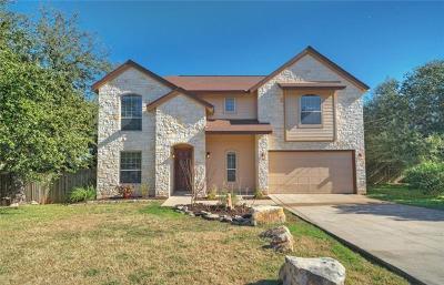 Austin Single Family Home For Sale: 2203 Crazyhorse Pass