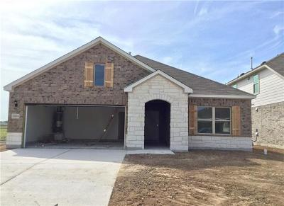 Manor Single Family Home For Sale: 12204 Texana Trl