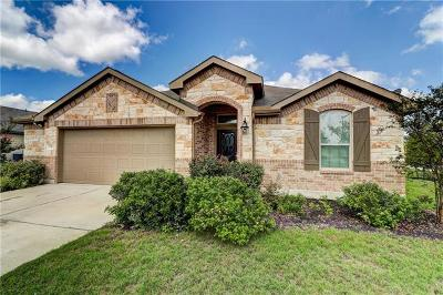 Kyle Single Family Home For Sale: 558 Evening Star