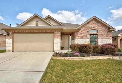 Buda Single Family Home For Sale: 238 Fossilstone Trl