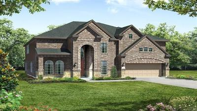 Leander Single Family Home For Sale: 2909 Long Lasso Pass