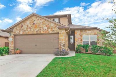 Pflugerville Single Family Home For Sale: 19301 Nicole Ln