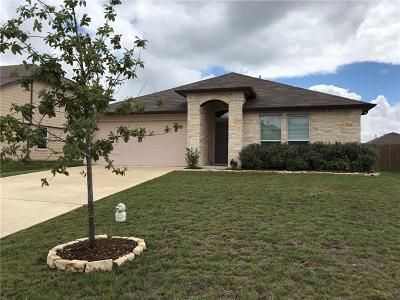Kyle Single Family Home For Sale: 497 Goddard