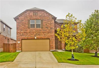 Georgetown Single Family Home For Sale: 222 Telluride Dr