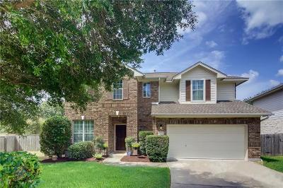 Travis County, Williamson County Single Family Home For Sale: 2509 Texan Dr