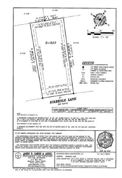 Bastrop County Residential Lots & Land For Sale: 344 Nene Ln