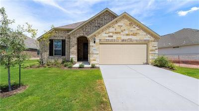 Pflugerville Single Family Home For Sale: 16825 Borromeo Ave