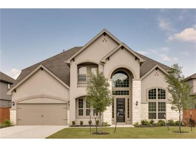Round Rock Single Family Home For Sale: 5025 Savio Dr