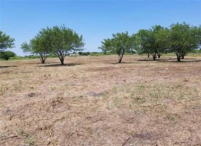 Martindale TX Residential Lots & Land For Sale: $155,000