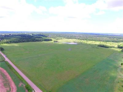 Elgin Farm For Sale: TBD County Road 302