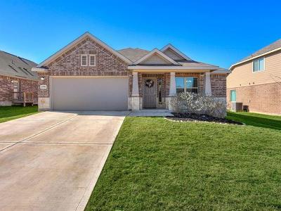 New Braunfels Single Family Home For Sale: 1990 Kalli Jo Ln