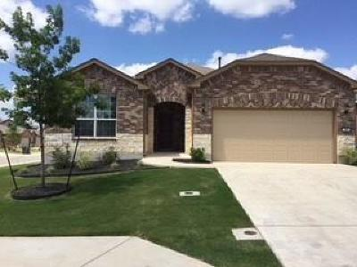 Sun City Single Family Home For Sale: 101 Gentry Creek Ln
