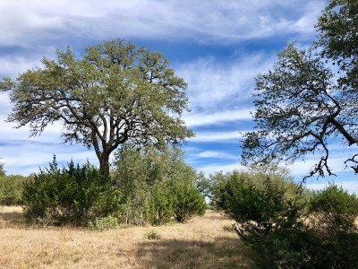 Blanco Residential Lots & Land For Sale: Lot 626 N Micah Andrews