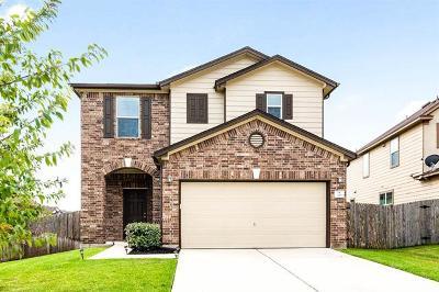 Kyle  Single Family Home For Sale: 120 Mistletoe Ln