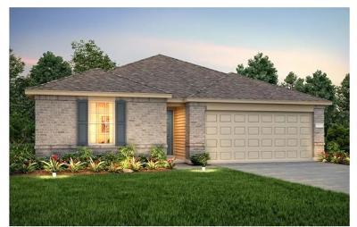 Williamson County Single Family Home For Sale: 400 Talon Grasp Trl
