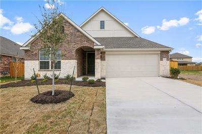 Pflugerville Single Family Home For Sale: 19404 Levels Trl