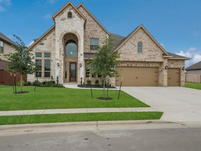 Round Rock Single Family Home For Sale: 5032 Savio Dr