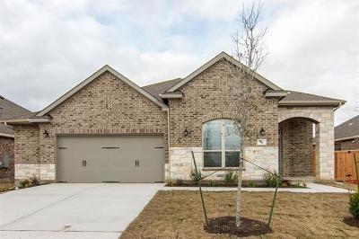 Williamson County Single Family Home For Sale: 520 Scenic Bluff Dr