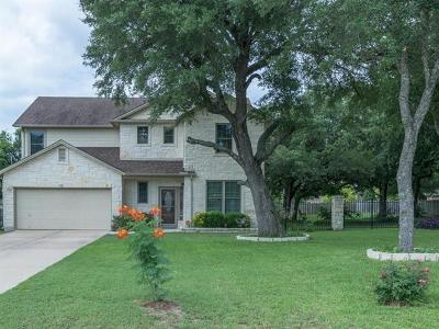 Kyle Single Family Home For Sale: 972 Bella Vista Cir
