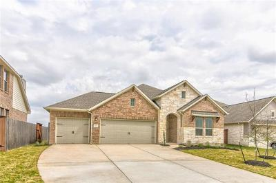 Liberty Hill Single Family Home For Sale: 4009 Discovery Well Dr