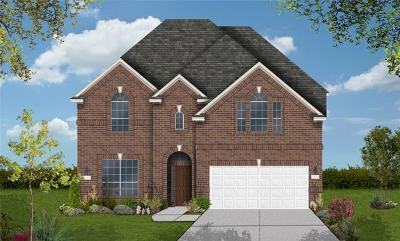 Pflugerville Single Family Home For Sale: 3717 Winter Wren Way