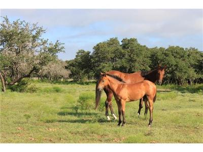 Farm For Sale: 250 S Encino Xing