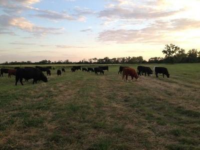 Farm For Sale: 123 Cr 103