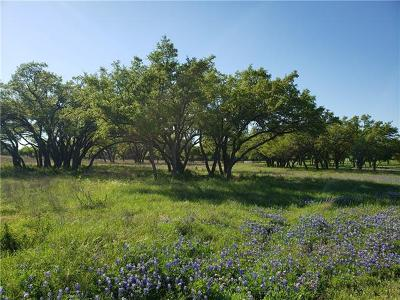 Dripping Springs Residential Lots & Land For Sale: 520 Diamond Path