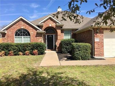 Kyle Single Family Home For Sale: 169 Amber Ash Dr