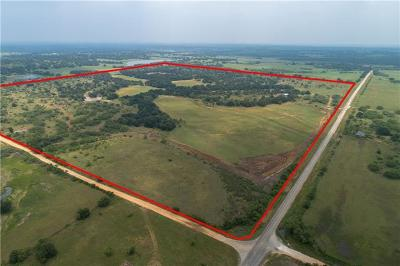 Burnet County, Lampasas County, Bell County, Williamson County, llano, Blanco County, Mills County, Hamilton County, San Saba County, Coryell County Farm For Sale: 2990 Fm 2997