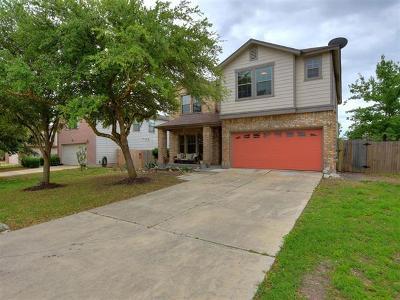 Buda, Kyle Single Family Home For Sale: 701 Abundance Ln