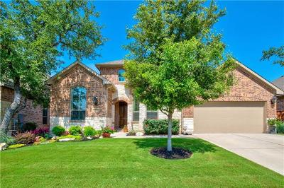 Round Rock Single Family Home For Sale: 3865 Skyview Way