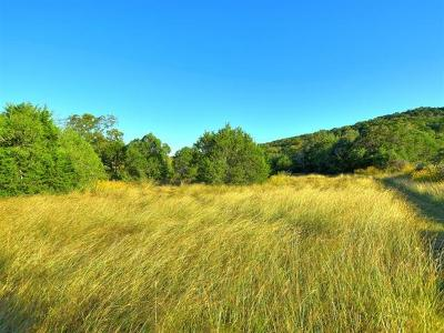 Austin Residential Lots & Land For Sale: 14609 Hamilton Pool Rd