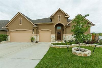 Round Rock Single Family Home Pending - Taking Backups: 4382 Caldwell Palm Cir