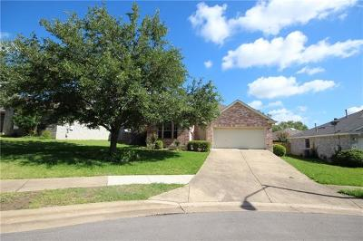 Travis County, Williamson County Single Family Home For Sale: 604 Canyon Trail Ct