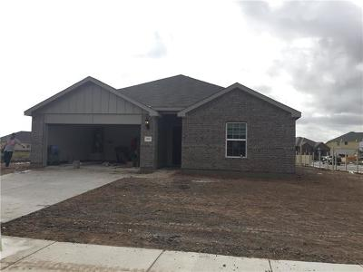 Hutto Single Family Home For Sale: 300 Colthorpe Ln