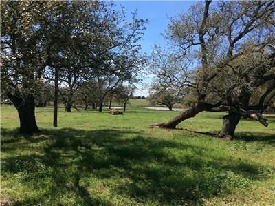 Giddings TX Farm For Sale: $589,000